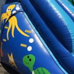 NY Party Works Water Slide