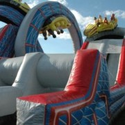 Wild one inflatable ride