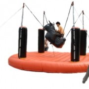 Bungee Bull blowup rental