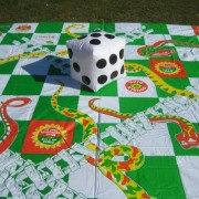 snakes and ladders giant