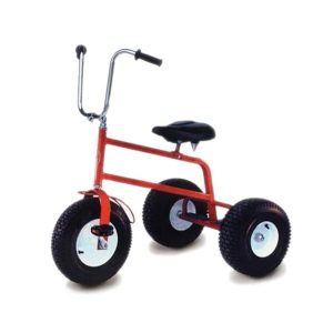 giant tricycles rentals