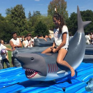 Riding a Mechanical Shark from NY Party Works