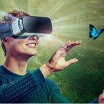 VR Pod Butterfly