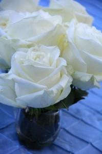 bridalshower_photo17
